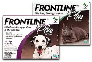 frontline pet meds