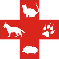 Image result for veterinary medicine